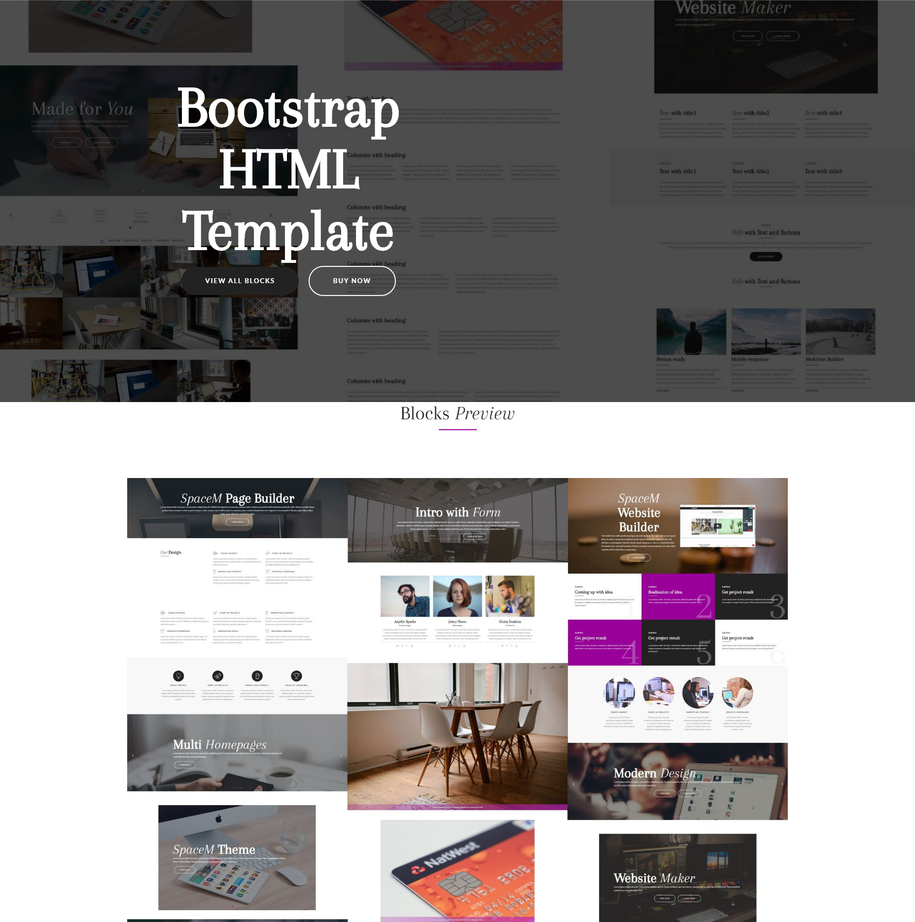 HTML5 Bootstrap SpaceM Themes
